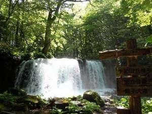 十和田湖畔温泉 とわだこ賑山亭:銚子大滝