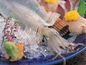 渚館きむら 唐津茶屋:唐津ならでは。呼子直送の活きイカ。ツルツル、コリコリとした食感です。