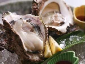 あじ蔵かろかろ:季節ごとに旬の牡蠣を「生」でお楽しみ