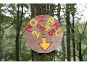 那須ハイランドパーク オフィシャルホテル TOWAピュアコテージ:那須の森の空中アスレチック『NOZARU』全12コース95エレメント!!日本最大級♪