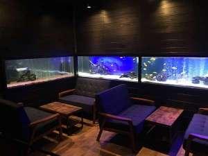 アクアペンション マリンヴィラ:熱帯魚に癒されに来てください(^◇^)