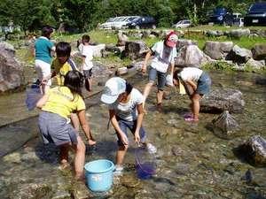 なかんじょ川 コテージ:川魚のつかみ採りもできます!つかんだ魚な炭火焼きで!