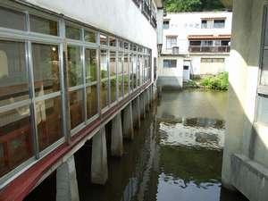 加登屋旅館:池の上に建つ、珍しい温泉旅館ですが、廊下はギシギシ、トイレは共同と大変ご迷惑をお掛け致します。