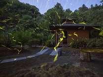 渓谷別庭 もちの木の施設写真1