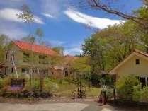 オステリア イゾラーナの施設写真1