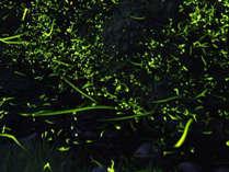 小城温泉 開泉閣の施設写真1