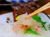 活魚料理 民宿松ヶ枝屋の施設写真1