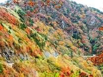 中津渓谷ゆの森の施設写真1