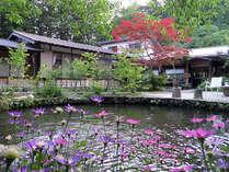 滝見温泉 滝見の家の写真
