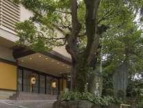熱海温泉 湯宿一番地 (志ほみや旅館 改め)の写真