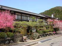 旅荘 茶谷の写真