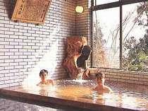 料理旅館 巴川荘の施設写真1