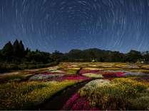くじゅう花公園キャンピングリゾート花と星の施設写真1