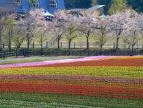 【花と緑のテーマパーク】☆牧歌の里入園券付きプラン☆【動物もたくさん♪】