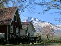 知床VILLA HOTEL FREEZEの施設写真1