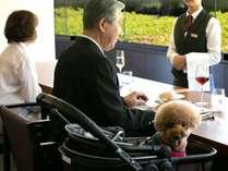 愛犬の宿 コレドール湯河原 Dog&Resort