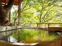 信州高山温泉郷 仙人露天岩風呂と渓谷美の宿 山田温泉 風景館の写真