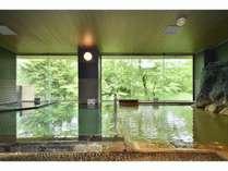 湯元白金温泉ホテルの施設写真1