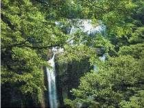 悠久の宿 滝美館の施設写真1