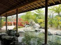 奥出雲 美肌温泉郷 亀嵩温泉 玉峰山荘の写真