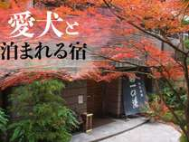 ペットと一緒に泊まれる宿 仙石高原大箱根 一の湯の施設写真1
