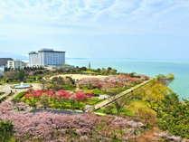 ホテル&リゾーツ 長浜 -DAIWA ROYAL HOTEL-の写真