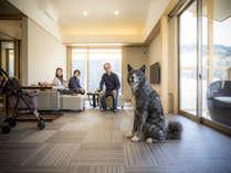 全室露天風呂付 愛犬と泊まれる温泉宿 わんこあんの施設写真1