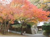 奥湯河原温泉 加満田の写真