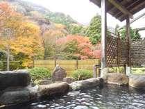 奥湯河原温泉 加満田の施設写真1