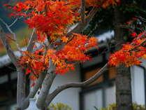 猿ヶ京温泉 生寿苑(しょうじゅえん)の施設写真1