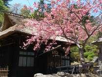 高湯温泉 旅館 玉子湯の施設写真1