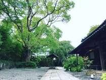 うぶすなの郷 TOMIMOTOの写真