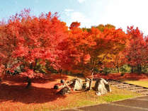 休暇村帝釈峽の写真