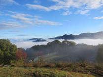 秩父長瀞 満天の星と雲海の宿 いこいの村ヘリテイジ美の山の施設写真1