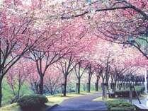 フェアフィールド・バイ・マリオット・京都みなみやましろの写真