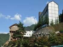 祖谷渓温泉 ホテル秘境の湯の写真