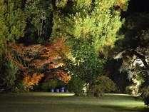嬉野温泉 大正屋湯宿 清流の写真