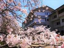 飯坂温泉 あづま荘の施設写真1