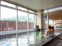 大井川鐵道川根温泉ホテルの写真