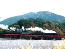 大井川鐵道川根温泉ホテルの施設写真1