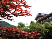 大谷山荘の写真