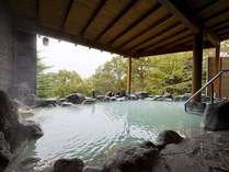 【じゃらん限定】那須の名湯を愉しむ 冬のお得な一泊二食 更に特典付き