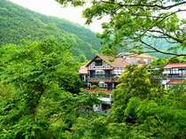 白壁荘 源泉掛け流し巨石・巨木露天とわさび料理の宿の写真