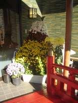 お宿 玉川苑の写真