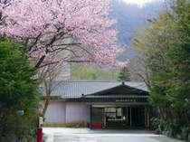 湯西川白雲の宿 山城屋の写真