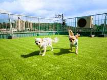 ペットと泊れる宿 ひがし茶屋街 夢見草の施設写真1