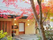 温泉山荘 だいこんの花の写真