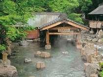 宝川温泉 汪泉閣の施設写真1