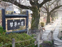 ゲストハウス葵 中本~ようこそ、山紫水明の都・京都へ~の施設写真1