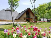 奥会津伝統「曲り屋」をモチーフとした離れが人気 花木の宿の写真